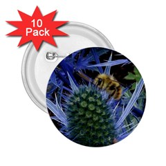 Chihuly Garden Bumble 2 25  Buttons (10 Pack)