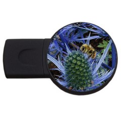 Chihuly Garden Bumble Usb Flash Drive Round (2 Gb)