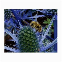 Chihuly Garden Bumble Small Glasses Cloth (2 Side)