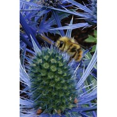 Chihuly Garden Bumble 5 5  X 8 5  Notebooks