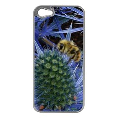 Chihuly Garden Bumble Apple Iphone 5 Case (silver)