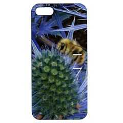 Chihuly Garden Bumble Apple Iphone 5 Hardshell Case With Stand