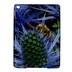 Chihuly Garden Bumble Ipad Air 2 Hardshell Cases