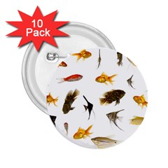 Goldfish 2 25  Buttons (10 Pack)