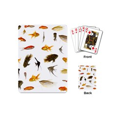 Goldfish Playing Cards (mini)