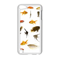 Goldfish Apple Ipod Touch 5 Case (white)