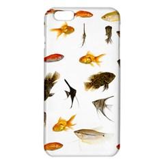 Goldfish Iphone 6 Plus/6s Plus Tpu Case