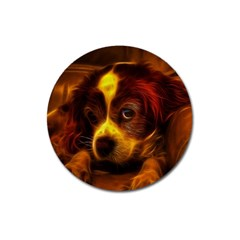 Cute 3d Dog Magnet 3  (round)