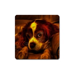 Cute 3d Dog Square Magnet