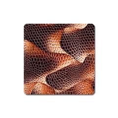 Snake Python Skin Pattern Square Magnet