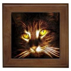 Cat Face Framed Tiles