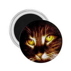Cat Face 2 25  Magnets