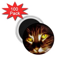 Cat Face 1 75  Magnets (100 Pack)