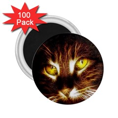 Cat Face 2 25  Magnets (100 Pack)