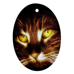 Cat Face Oval Ornament (two Sides)