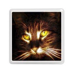 Cat Face Memory Card Reader (square)