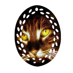 Cat Face Oval Filigree Ornament (two Sides)