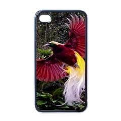 Cendrawasih Beautiful Bird Of Paradise Apple Iphone 4 Case (black)