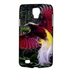 Cendrawasih Beautiful Bird Of Paradise Galaxy S4 Active