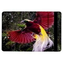 Cendrawasih Beautiful Bird Of Paradise Ipad Air Flip