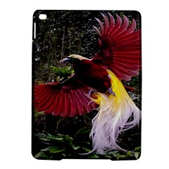 Cendrawasih Beautiful Bird Of Paradise Ipad Air 2 Hardshell Cases