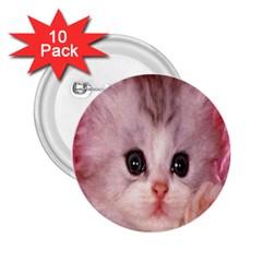 Cat  Animal  Kitten  Pet 2 25  Buttons (10 Pack)
