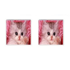 Cat  Animal  Kitten  Pet Cufflinks (square)