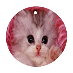 Cat  Animal  Kitten  Pet Round Ornament (two Sides)