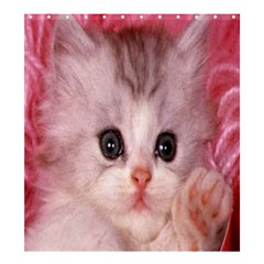 Cat  Animal  Kitten  Pet Shower Curtain 66  X 72  (large)