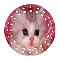 Cat  Animal  Kitten  Pet Ornament (round Filigree)