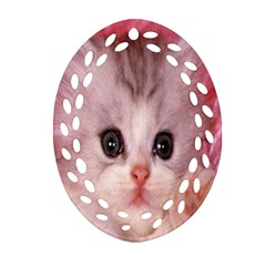 Cat  Animal  Kitten  Pet Oval Filigree Ornament (two Sides)
