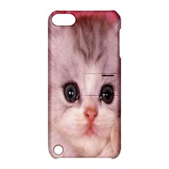 Cat  Animal  Kitten  Pet Apple Ipod Touch 5 Hardshell Case With Stand