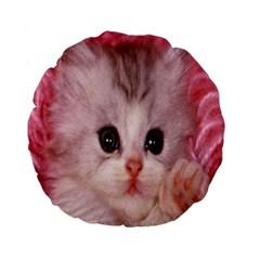 Cat  Animal  Kitten  Pet Standard 15  Premium Flano Round Cushions