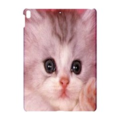 Cat  Animal  Kitten  Pet Apple Ipad Pro 10 5   Hardshell Case