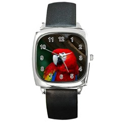 Scarlet Macaw Bird Square Metal Watch