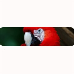 Scarlet Macaw Bird Large Bar Mats
