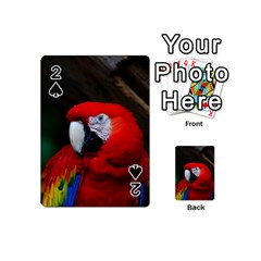 Scarlet Macaw Bird Playing Cards 54 (mini)