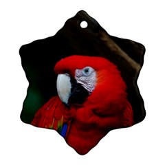 Scarlet Macaw Bird Snowflake Ornament (two Sides)