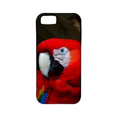 Scarlet Macaw Bird Apple Iphone 5 Classic Hardshell Case (pc+silicone)