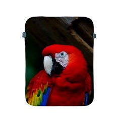 Scarlet Macaw Bird Apple Ipad 2/3/4 Protective Soft Cases