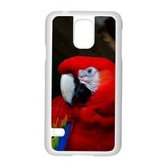 Scarlet Macaw Bird Samsung Galaxy S5 Case (white)