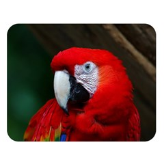 Scarlet Macaw Bird Double Sided Flano Blanket (large)
