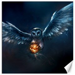 Owl And Fire Ball Canvas 20  X 20