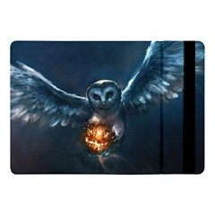 Owl And Fire Ball Apple Ipad Pro 10 5   Flip Case