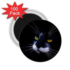 Face Black Cat 2 25  Magnets (100 Pack)