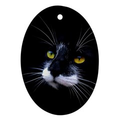 Face Black Cat Oval Ornament (two Sides)