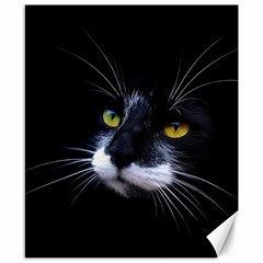 Face Black Cat Canvas 8  X 10