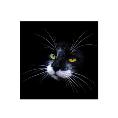 Face Black Cat Satin Bandana Scarf