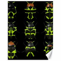 Beetles Insects Bugs Canvas 18  X 24