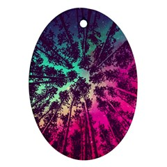 Just A Stargazer Oval Ornament (two Sides)